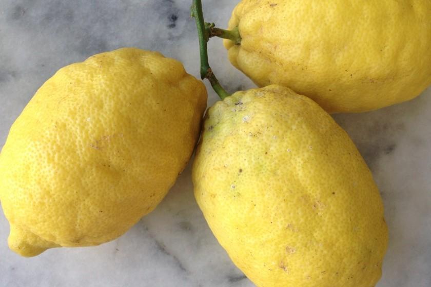Amalfi limun